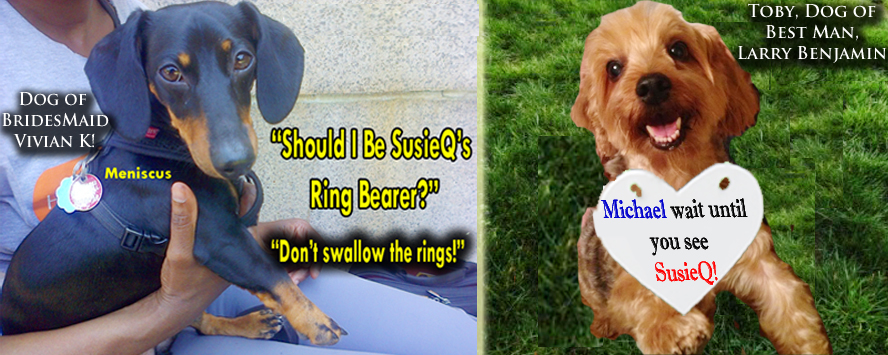 Should a Dog be a Ring Bearer?